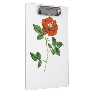 Vintage Red Rose Illustration Clipboard