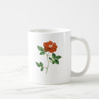 Vintage Red Rose Illustration Mug