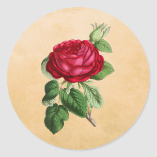 Vintage Red Rose on a Faux Tan Leather Background Classic Round Sticker