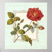 Vintage Red Rose Shabby Elegance Poster