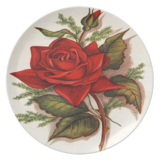 Vintage, Red Rose, Wife Birthday, Plate