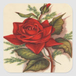 """Vintage, Red Rose, Wife Birthday Square Sticker<br><div class=""""desc"""">Vintage,  Red Rose,  Wife Birthday. Image used on this item is licensed by www.butterflywebgraphics.com</div>"""
