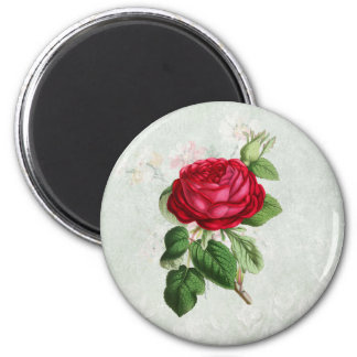 Vintage Red Rose with Foliage 2 Inch Round Magnet