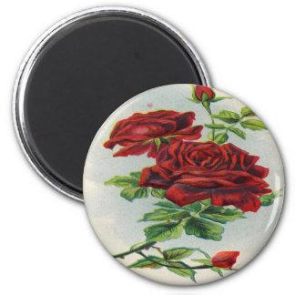 Vintage, Red Roses, Girlfriend Birthday Magnet