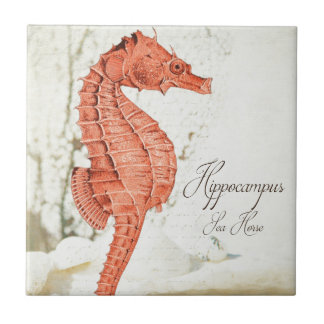 Vintage Red Sea Horse Tile