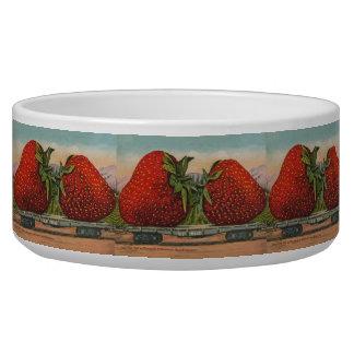 Vintage Red Strawberries Fresh Fruit Bowl