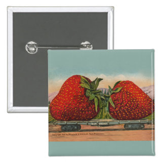 Vintage Red Strawberries Fresh Fruit Button