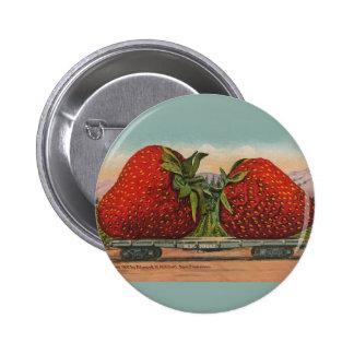 Vintage Red Strawberries Fresh Fruit Pinback Button