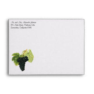 Vintage Red Wine Organic Grape Cluster, Food Fruit Envelope