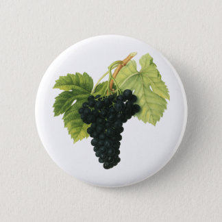 Vintage Red Wine Organic Grape Cluster, Food Fruit Pinback Button