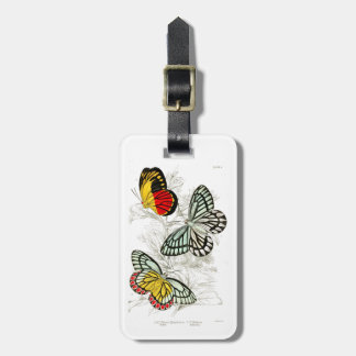 Vintage Red Yellow Butterflies Insects Luggage Tag