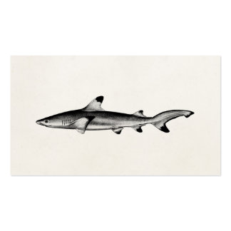 Vintage Reef Shark Illustration - Black Tipped Double-Sided Standard Business Cards (Pack Of 100)