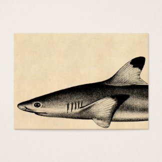 Vintage Reef Shark Illustration Black Tipped Business Card