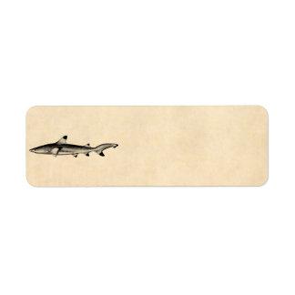 Vintage Reef Shark Illustration - Black Tipped Return Address Labels