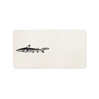 Vintage Reef Shark Illustration - Black Tipped Label