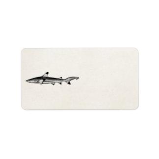 Vintage Reef Shark Illustration - Black Tipped Address Label
