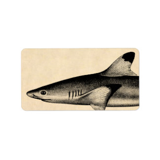 Vintage Reef Shark Illustration Black Tipped Label