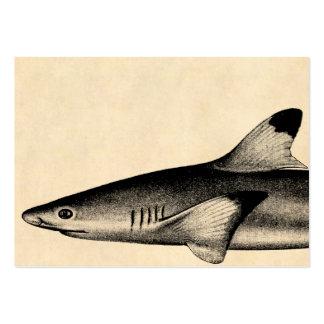 Vintage Reef Shark Illustration Black Tipped Large Business Cards (Pack Of 100)