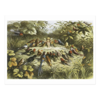 Vintage Rehearsal In Fairyland 1870 Post Cards