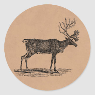 Vintage Reindeer Illustration -1800 s Christmas Round Sticker