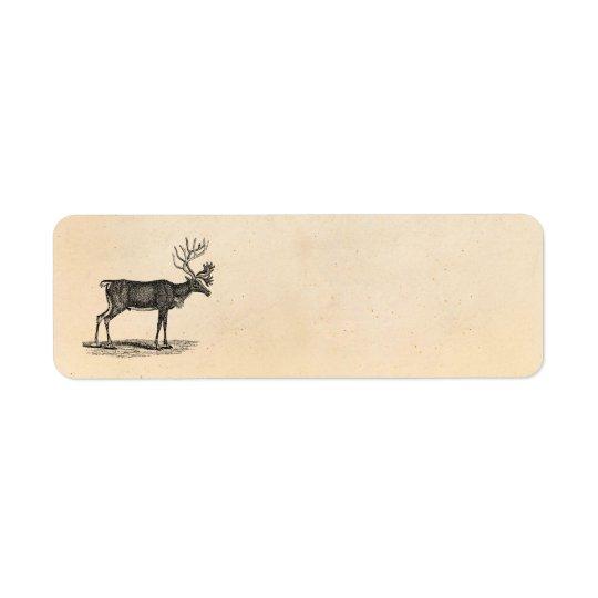 Vintage Reindeer Illustration -1800's Christmas Label