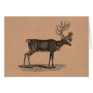 Vintage Reindeer Illustration -1800's Christmas Stationery Note Card