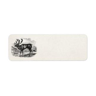 Vintage Reindeer Personalized Deer Illustration Label