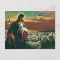 Vintage Religion, Christ Good Shepherd with Flock Postcard