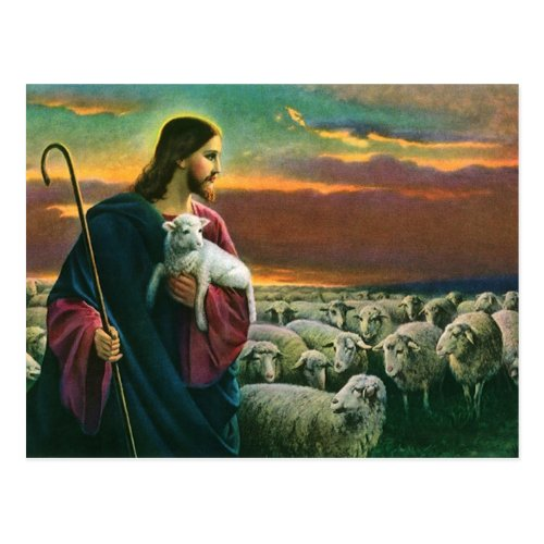 Vintage Religion Christ Good Shepherd with Flock Postcard