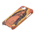 Vintage Religion, Lady of Guadalupe, Virgin Mary iPhone 5 Case