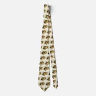 Vintage Religion, Victorian Angels in the Clouds Tie