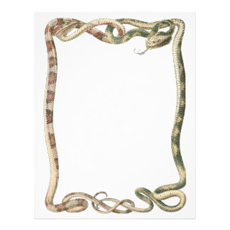 Vintage Reptiles, Snakes or Vipers Entwined Border Flyer