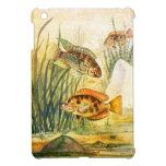 Vintage Restored Fish iPad Mini Covers