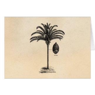 Vintage Retro Brazilian Palm Tree Template Palms Cards
