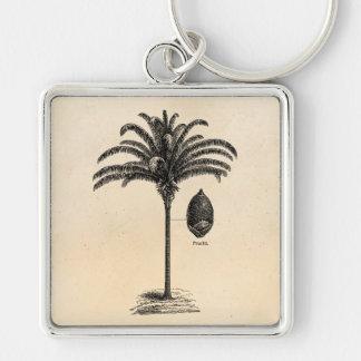 Vintage Retro Brazilian Palm Tree Template Palms Silver-Colored Square Keychain