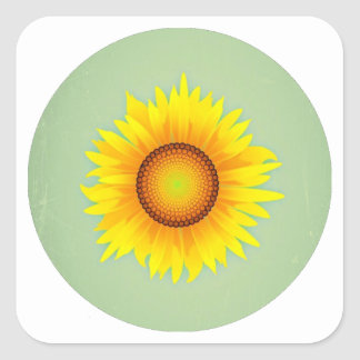 Vintage Retro Bright Yellow Sunflower / Mint Green Square Stickers