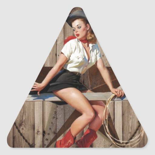 vintage retro fashion western country stickers