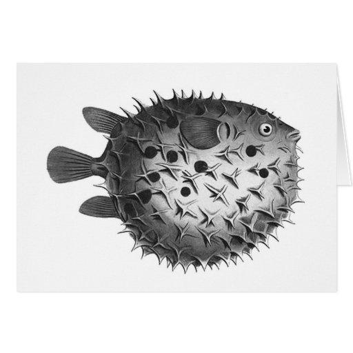 Vintage Retro Illustration Pufferfish Card