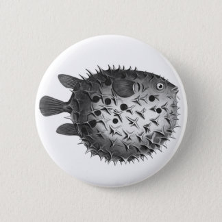 Vintage Retro Illustration Pufferfish Pinback Button
