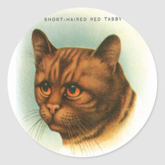 Vintage Retro Kitsch Cat Short Haired Red Tabby Classic Round Sticker