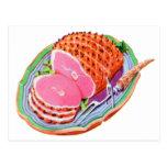 Vintage Retro Kitsch Food Cookbook Ham Dinner Postcard