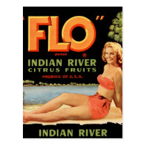 Vintage Retro Kitsch Fruit Crate Pin Up Flo Girl Postcard