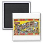 Vintage Retro Kitsch Wisconsin Dells Postcard 2 Inch Square Magnet
