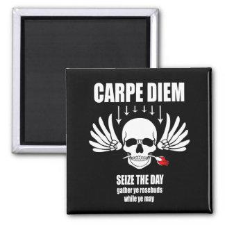 Vintage Retro Seize the day. Carpe Diem Magnet