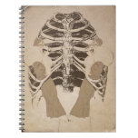 Vintage Retro Woman Ribs Spiral Notebook
