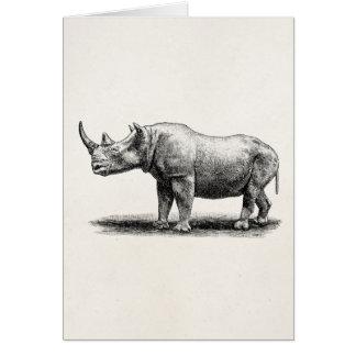 Vintage Rhinoceros Illustration Rhino Rhinos Card
