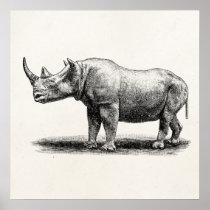 Vintage Rhinoceros Illustration Rhino Rhinos Poster
