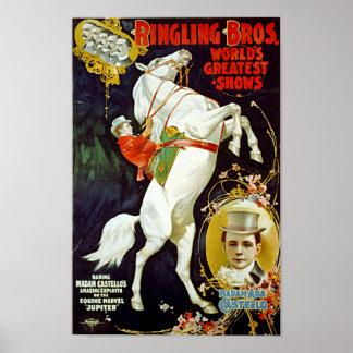 Vintage Ringling Bros. White Horse Poster