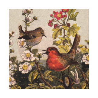 Vintage Robins for Bird Lovers Canvas Print