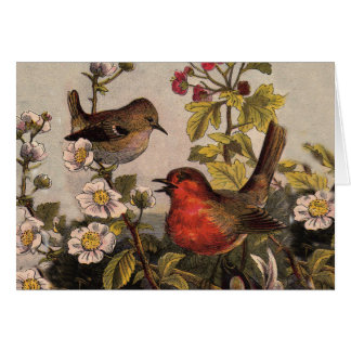 Vintage Robins for Bird Lovers Cards